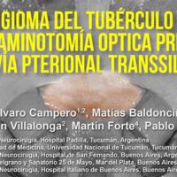 Meningioma del Tubérculo Selar: Foraminotomía Óptica Precoz Por Vía Pterional Transsilviana