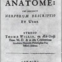 Fig. 1. Anatomía cerebral, obra del médico y anatomista Thomas Willis.
