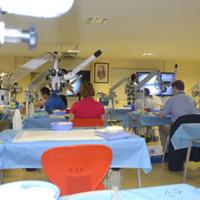 IV Curso de Disección de Fibras Blancas y Anastomosis Microvascular<br /><br /> Estambul, 13 al 21 de Junio de 2013