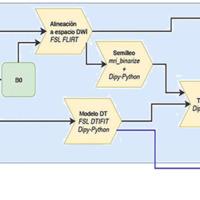 Procesamiento de DWI. Método para el procesamiento de DWI. En la Figura se ha omitido el pre-procesamiento para focalizar el procedimiento en la obtención de los tractos. Las abreviaciones de la Figura hacen referencia a: i) B0 es la imagen de difusión sin ponderación por dirección (T2 3D rápida); ii) Modelo DT se refiere al Modelo Tensor de Difusión; iii) Tracking al proceso de reconstrucción de tractos; iv) MO se refiere a la medida de Moda, MD a la difusividad media; V# a los autovectores; L# a los autovalores y FA a la fracción de anisotropía, todas imágenes escalares derivadas del modelo Modelo Tensor de Difusión.