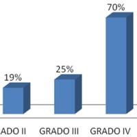 Gráfico 1: Relación entre el grado de Spetzler-Martin y porcentaje de la muestra<br /> embolizado.